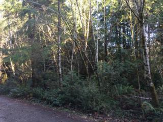 700 E Passage View Rd  , Shelton, WA 98584 (#725291) :: Home4investment Real Estate Team