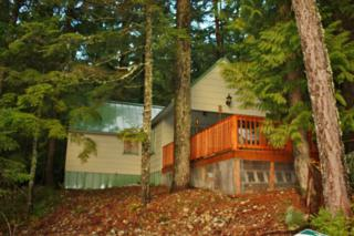 130  Forest Service Road 4832  , Snoqualmie Pass, WA 98068 (#725685) :: FreeWashingtonSearch.com