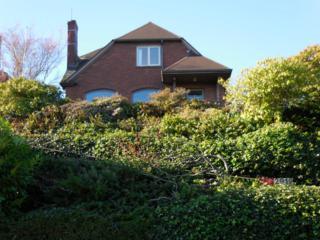 2919  26th Ave W , Seattle, WA 98199 (#729907) :: FreeWashingtonSearch.com