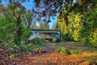 539  Alexander Ave  , Kirkland, WA 98033 (#730686) :: Exclusive Home Realty