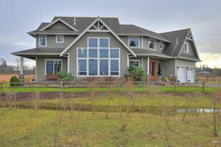 4851  Drayton Harbor Rd  , Blaine, WA 98230 (#731427) :: Home4investment Real Estate Team