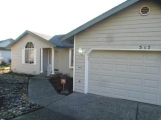 517  Sapp Rd  , Sedro Woolley, WA 98284 (#734636) :: Home4investment Real Estate Team