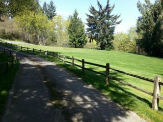 529  Eagle Ridge Lane  , Fox Island, WA 98333 (#734980) :: Keller Williams Realty