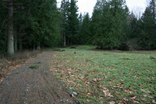 1606  Mt Baker Hwy  , Bellingham, WA 98226 (#735915) :: Home4investment Real Estate Team