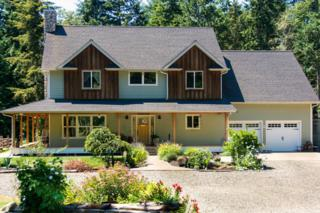 871  Black Bear Rd  , Port Townsend, WA 98368 (#737341) :: Home4investment Real Estate Team