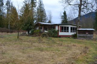 10655  Potts Rd  , Sedro Woolley, WA 98284 (#742775) :: Home4investment Real Estate Team