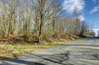 25008 NE 52nd Place  , Redmond, WA 98053 (#744478) :: Exclusive Home Realty