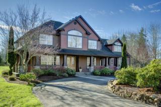 25235 NE Union Hill Rd  , Redmond, WA 98053 (#744881) :: The DiBello Real Estate Group