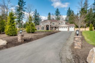 24610 NE 72nd St  , Redmond, WA 98053 (#744884) :: Home4investment Real Estate Team