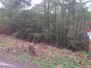 328-XX  72nd Ave S , Roy, WA 98580 (#746689) :: Home4investment Real Estate Team