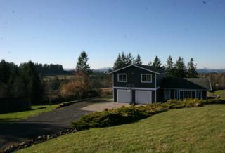 502  Penning Rd  , Chehalis, WA 98532 (#748414) :: Nick McLean Real Estate Group