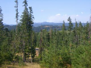 0  Lot 4A Alpineview Dr  , Cle Elum, WA 98922 (#749086) :: Home4investment Real Estate Team