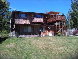 17506  49th St KP , Vaughn, WA 98394 (#749738) :: Priority One Realty Inc.
