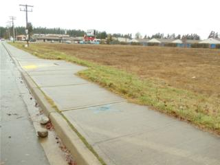14815  Pacific Ave SE , Tacoma, WA 98444 (#750162) :: Home4investment Real Estate Team
