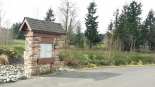 33029  138th Place SE , Auburn, WA 98092 (#750192) :: Home4investment Real Estate Team