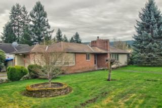 1201  Township St  , Sedro Woolley, WA 98284 (#760789) :: Home4investment Real Estate Team