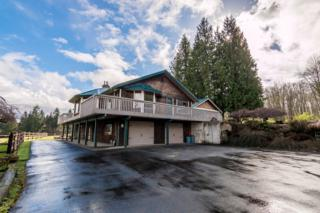 328  138th St NW , Marysville, WA 98271 (#761578) :: Nick McLean Real Estate Group