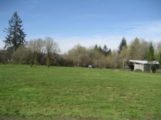 31520 NE 26th Ave  , La Center, WA 98629 (#763495) :: Home4investment Real Estate Team
