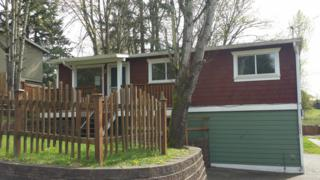 11619 SE 276th St  , Kent, WA 98030 (#765112) :: Home4investment Real Estate Team