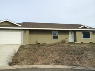 2005  Topaz Place  , Entiat, WA 98822 (#765148) :: Home4investment Real Estate Team