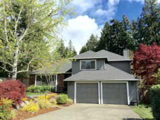 920  225th Ct NE , Sammamish, WA 98074 (#769616) :: Exclusive Home Realty