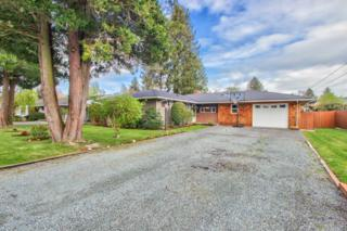 818  Evans Dr  , Sedro Woolley, WA 98284 (#771272) :: Home4investment Real Estate Team