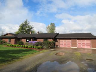 7342  Union Square Lane  , Sedro Woolley, WA 98284 (#773316) :: Home4investment Real Estate Team