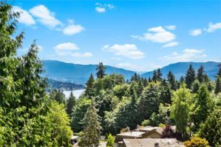 242  168th Ave NE , Bellevue, WA 98008 (#773780) :: Home4investment Real Estate Team
