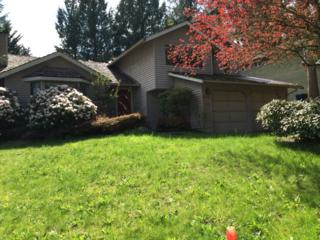 22543 NE 12TH Place  , Sammamish, WA 98074 (#773998) :: Exclusive Home Realty