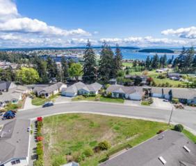 0-XXXX  Harbor Vista Cir  , Oak Harbor, WA 98277 (#774045) :: Home4investment Real Estate Team