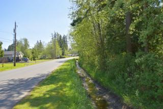 8712  Habor Dr  , Blaine, WA 98230 (#774377) :: Home4investment Real Estate Team