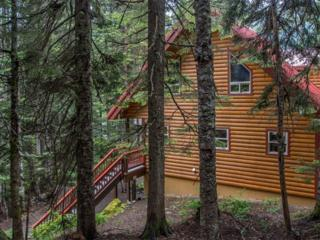 58  Alta Lp  , Snoqualmie Pass, WA 98068 (#774893) :: FreeWashingtonSearch.com