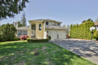 18124  Cedarbough Lp  , Arlington, WA 98223 (#776903) :: Home4investment Real Estate Team