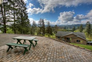 255  Little Kalama River Rd  , Woodland, WA 98674 (#776951) :: Home4investment Real Estate Team
