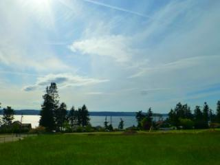 673  Field Rd  , Camano Island, WA 98282 (#781119) :: Home4investment Real Estate Team