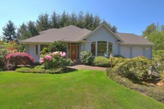 7092  Atwood Rd  , Ferndale, WA 98248 (#785632) :: Home4investment Real Estate Team