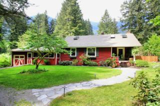 46632 SE Mt Si Rd  , North Bend, WA 98045 (#791247) :: Nick McLean Real Estate Group