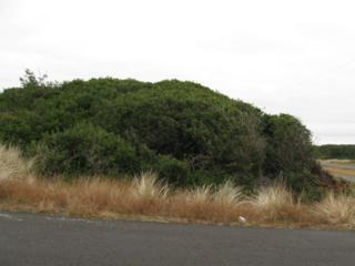 930  Ocean Shores Blvd  , Ocean Shores, WA 98569 (#792542) :: Nick McLean Real Estate Group