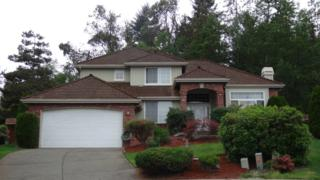 713 SW 353 Place  , Federal Way, WA 98023 (#792584) :: Exclusive Home Realty