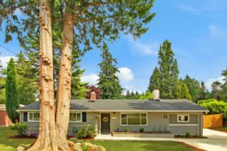 3976  154th Ave SE , Bellevue, WA 98006 (#792782) :: Exclusive Home Realty