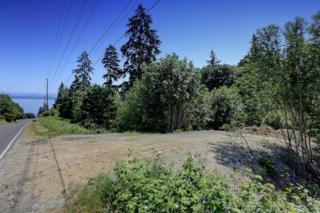 0-XX E Monticello Drive  , Camano Island, WA 98282 (#794398) :: Home4investment Real Estate Team