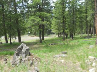 0-Lot 30  Moate Rd  , Mazama, WA 98833 (#795870) :: The Kendra Todd Group at Keller Williams
