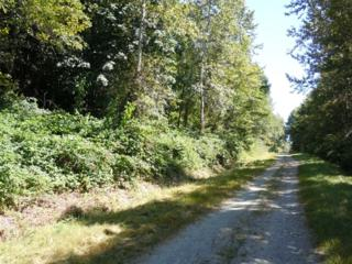 0-Lot 73  Bacus Lane  , Sedro Woolley, WA 98284 (#600899) :: Home4investment Real Estate Team