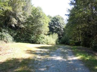 0-Lot 74  Bacus Lane  , Sedro Woolley, WA 98284 (#600901) :: Home4investment Real Estate Team