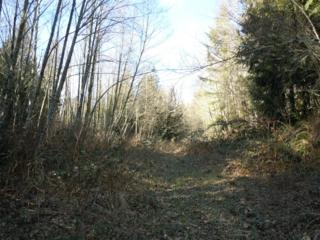 0-Lt 67-69  Bacus Lane  , Sedro Woolley, WA 98284 (#600933) :: Home4investment Real Estate Team