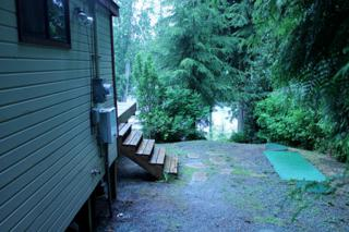 1102 S Lake Roesiger Rd  , Snohomish, WA 98290 (#641012) :: Home4investment Real Estate Team