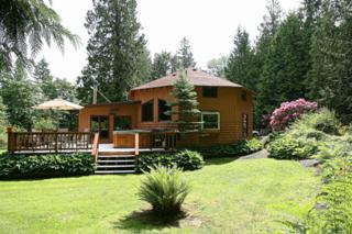 8957  Frost Rd  , Sumas, WA 98295 (#646582) :: Home4investment Real Estate Team