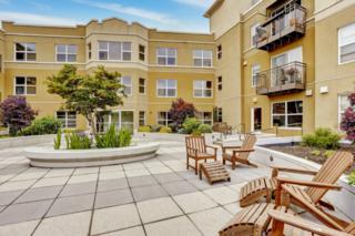 413 NE 70th St  208, Seattle, WA 98115 (#646914) :: Exclusive Home Realty