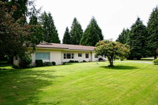 1201  Nelson St  , Sedro Woolley, WA 98284 (#651044) :: Home4investment Real Estate Team