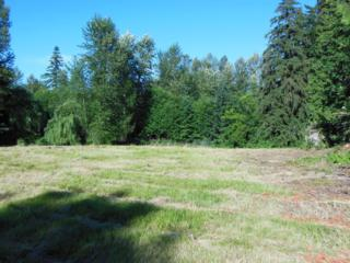 24204-24054  132nd Ave SE , Kent, WA 98042 (#662433) :: FreeWashingtonSearch.com